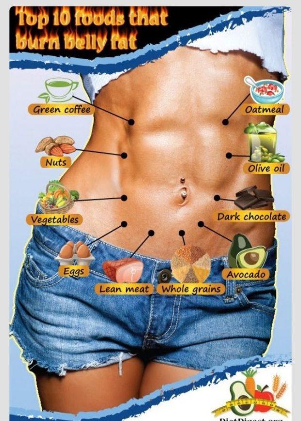 Foods burn belly fat dr oz