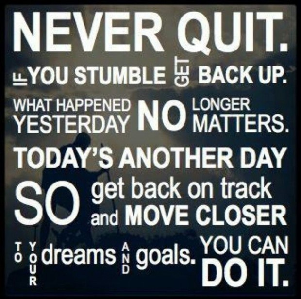 NEVER QUIT daily motivational quote!