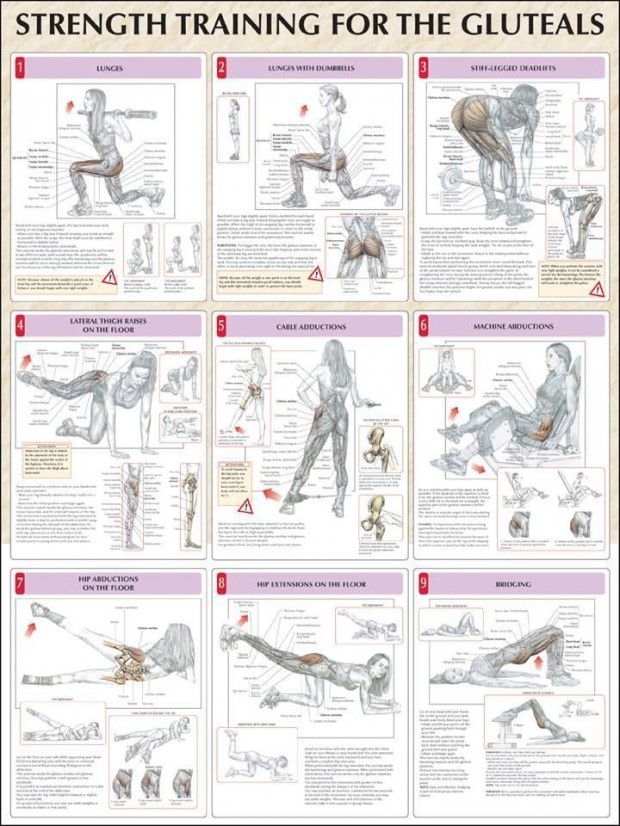9 Different Butt Anatomy Workouts for Women