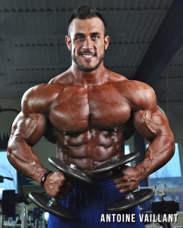 Bodybuilding Bulking Diet Plan