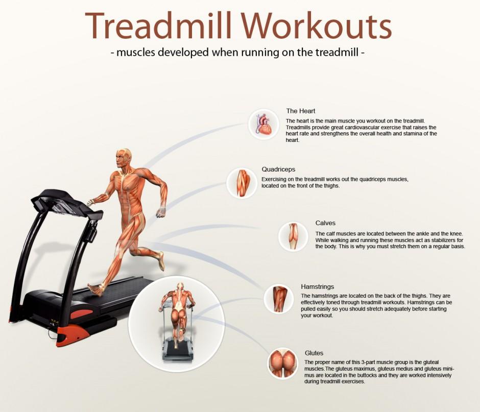 treadmill facts