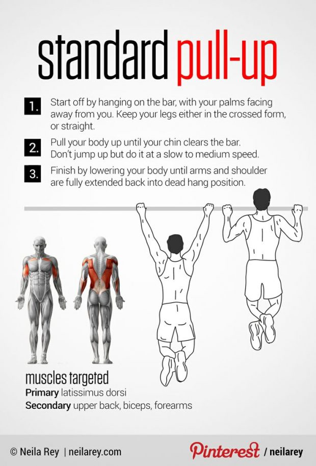 How to Master the Pull Up For Beginners