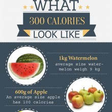 What 300 Calories of Different Foods Looks Like Graphic