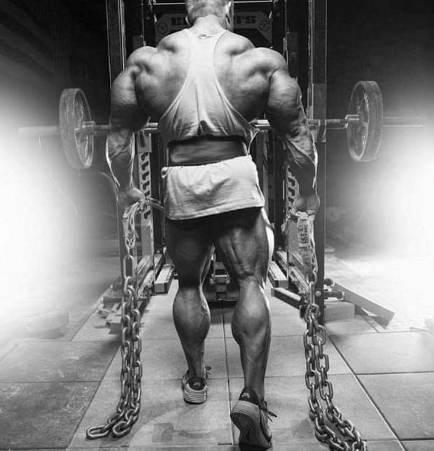 bodybuilding-Training Routine