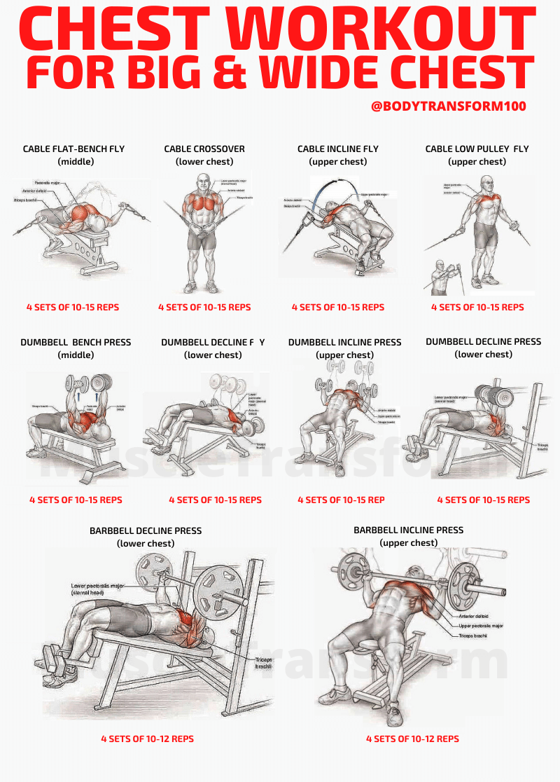 men-chest-athome-workout-dumbbell