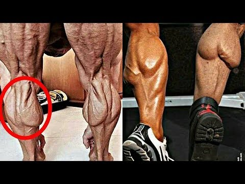 5 Reasons Why Your Calf Are Not Getting Bigger