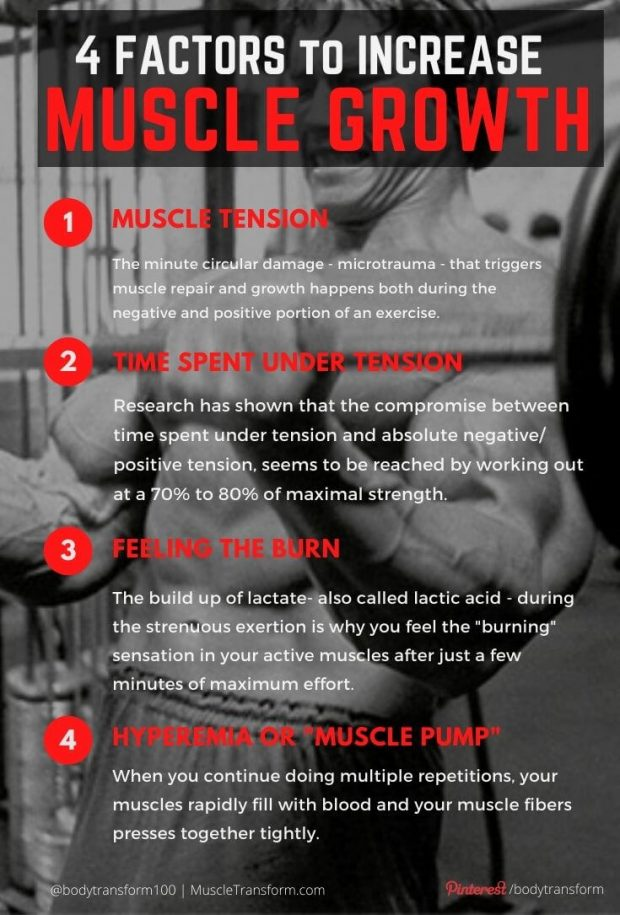 4 Factors that Increase Muscle Growth Rate